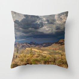 Arizona Throw Pillow