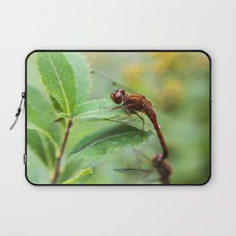 Fly later Laptop Sleeve