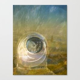 TMT / The Biggest Spatial Eye / EXPLORERS ONLY Canvas Print