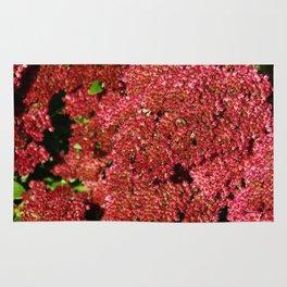 Red Sedum Rug