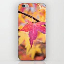 Autumn Still iPhone Skin
