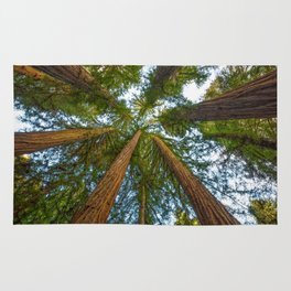 Redwood Forest Canopy Rug