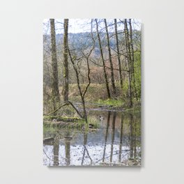 Reflecting On Life After The Rain, Issaquah Metal Print