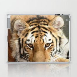 Tiger Eyes Laptop & iPad Skin