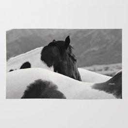 Pinto Horse Photograph Rug