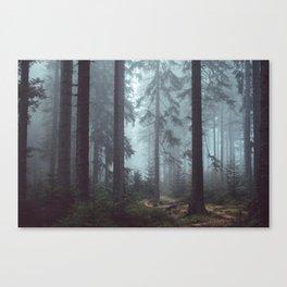 Šumava Forest Canvas Print