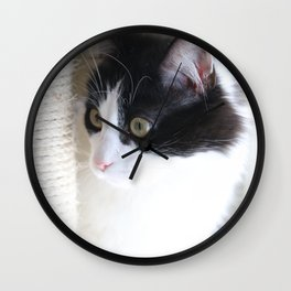 Curious Kitty Wall Clock