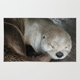 Sleeping Otter in a Log Rug
