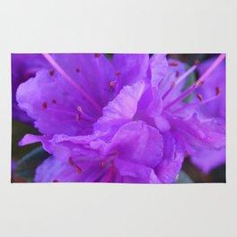 Ramapo Rhododendron 2 Rug