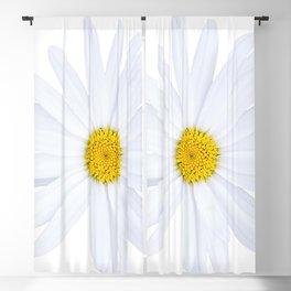 Sunshine daisy Blackout Curtain