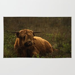 Scottish Highland hairy cow Rug