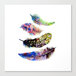 Psychedelic Feathers Canvas Print