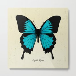 Butterfly03_Papilio ulysses Metal Print