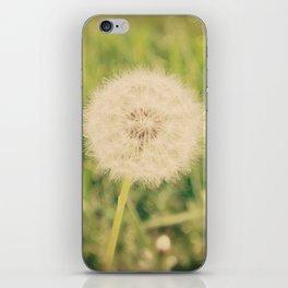 Summer Dandelion  iPhone Skin