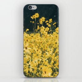 Daisies For Days iPhone Skin