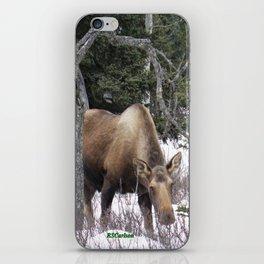 Roadside Browse iPhone Skin