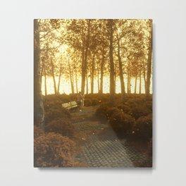 That time last Autumn Metal Print