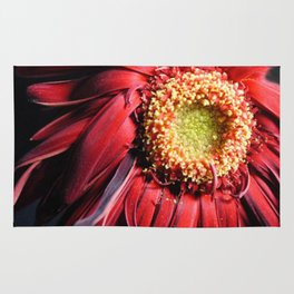 Wilting Red Daisy Rug