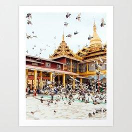 Pigeons descend on Buddhist Temple in Burma Fine Art Print Art Print