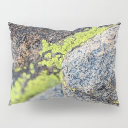 lichen on a hike Pillow Sham