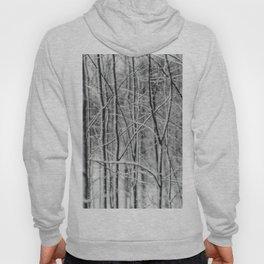 Winter gris Hoody