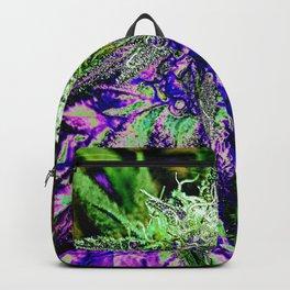msdjwp101 Backpack