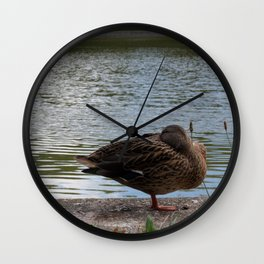 Vienna Schonbrunn Duck Wall Clock