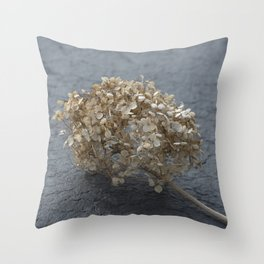 Blossoms on Blacktop Throw Pillow