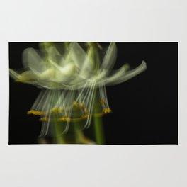 Blurring the flower Rug