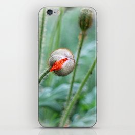 I am bursting!! iPhone Skin