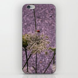 Seclusion iPhone Skin