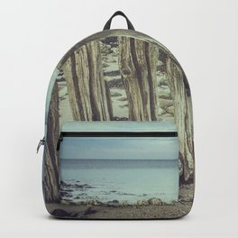 Walrus teeth still standing Backpack