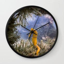 Seahorse Window Wall Clock