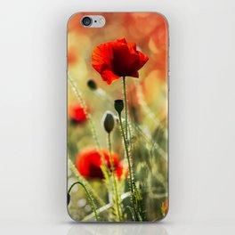 Poppy IV. iPhone Skin
