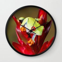 Red Eyed Tree Frog On Bromeliad Wall Clock