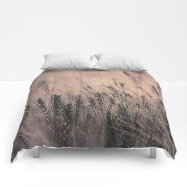 Barley-Pink Comforters