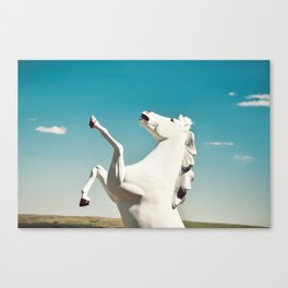Guardian of the Plains Canvas Print
