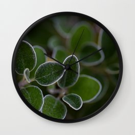 White Edged Sage in the Fall Wall Clock