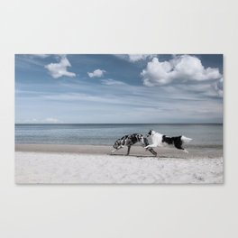 Running dogs at the beach Canvas Print