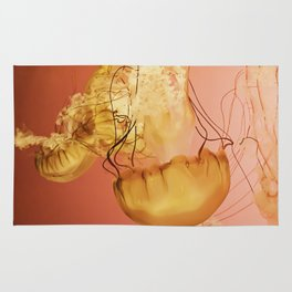 Fire   Jellyfish Photograph Rug