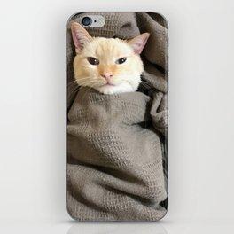 Snugg Bugg iPhone Skin