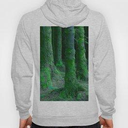 IRISH FOREST Hoody