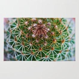 Cactus 3 Rug