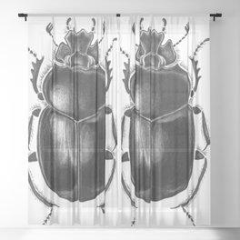 Beetle 13 Sheer Curtain