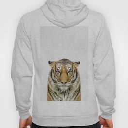 African Tiger Hoody