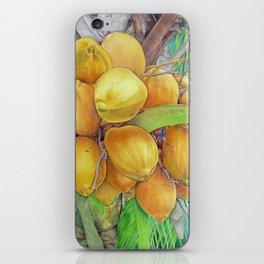 Golden Coconuts iPhone Skin