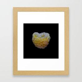 Golden Raspberry Framed Art Print