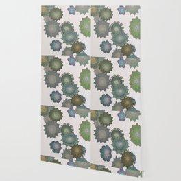 Succulent Spiral Wallpaper