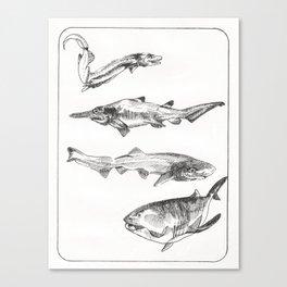 Deep Sea Sharks Canvas Print