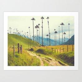 Wax Palms Tower over Colombian Coffee Plantation Fine Art Print Art Print
